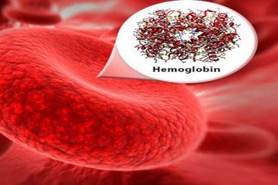 Hemoglobin Meters