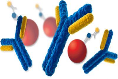 Immunoassay Analyzer